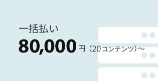 一括払い80,000円~